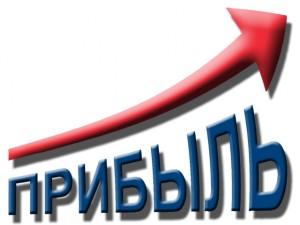 Прибыль Корпорации Развития по итогам 2012 года превысила 200 млн рублей
